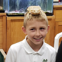 Lizard on student's head